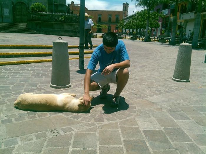 En un país con 10 millones de perros callejeros, Adrián busca rescatar a los que habitan las calles de Zapotlanejo. Foto: Lucía Castillo