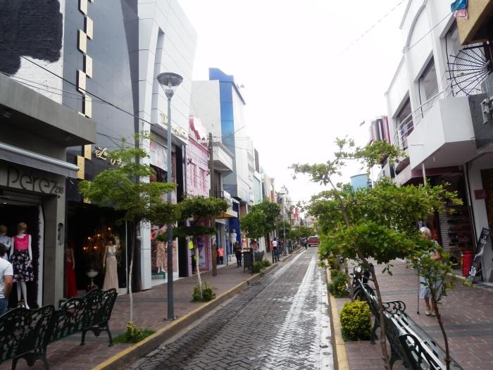 La calle Guadalupe Victoria. Foto: Lucía Castillo
