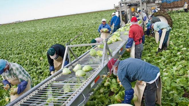 El fondo aplica para migrantes de retorno o familiares que reciben remesas de éstos. Foto: www.unionguanajuato.mx