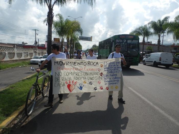 Busca en Facebook a Movimiento ROCA -Readaptación Canina-. Foto: Lucía Castillo